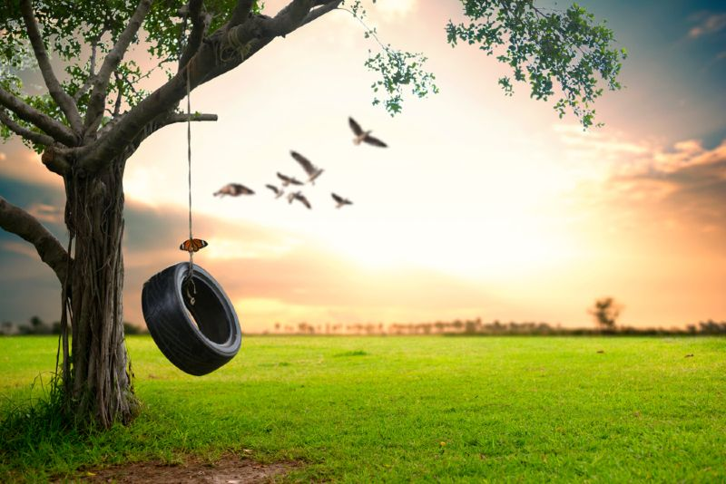 How To Hang a Tire Swing from a Tall Tree