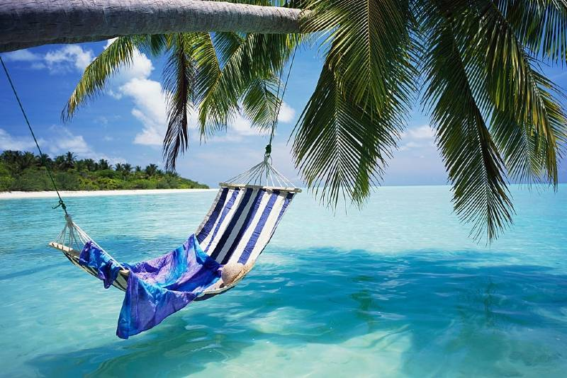 How Much Does a Hammock Cost