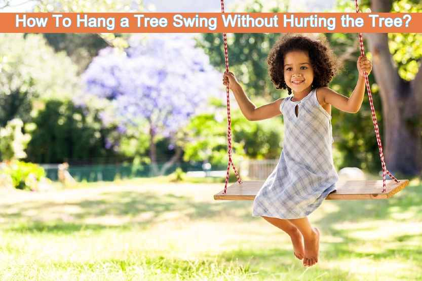 How To Hang a Tree Swing Without Hurting the Tree?